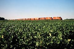AA, Temperance, Michigan, 1982 (railphotoart) Tags: park allen unitedstates michigan 209 sb aa rd wick temperance stillimage 19250