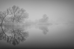 Semlin (Jaques10000) Tags: longexposure mist monochrome landscape blackwhite nikon le landschaft brandenburg havelland semlin d5100