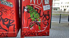 Perroquet Portorricain (ezbai) Tags: streetart verde green bird graffiti stencil bruxelles bruselas pajaro stencilart loro cotorra perroquet pochoir ezbai