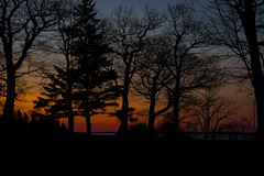 16 April 2016 (runningman1958) Tags: nature silhouette outdoors dawn nikon outdoor redsky 365 lakeontario crepuscule firstlight 365dayproject d7200 nikond7200