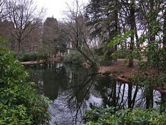 20160319-114049LC (Luc Coekaerts from Tessenderlo) Tags: reflection tree public netherlands bench mirror pond bank nobody creativecommons vijver vlodrop vak nld provincielimburg vlodropstation cc0 coeluc 20160319114049lc vak201603vlodrop
