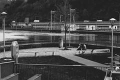 Neckarview (Isengardt) Tags: street bw white black boys monochrome composition forest canon river germany deutschland eos 50mm pier woods europa europe rail sw lamps monochrom ufer fluss wald weiss schwarz neckar jungs komposition esslingen lampen gelnder badenwrttemberg b10 strase 550d strasenlaternen