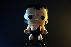 2 (Sam_Carpenter1974) Tags: toys wrestling andrethegiant wwe wwf funkopops
