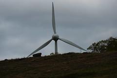 Hill Power (pokoroto) Tags: canada spring power wind hill alberta april turbine 2016  4  uzuki  shigatsu  unohanamonth 28