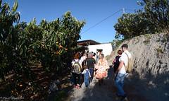Subida a la ermita (19) (GonzalezNovo) Tags: granada jete romeria bodijar pwmelilla virgendebodijar bodijar2016