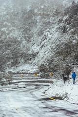 DSC09181 (Jeffrey Hu) Tags: snow zeiss 35mm sony   grassmountain a7r