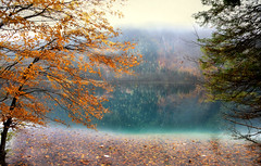Whispers of nature... (Weirena) Tags: nature austria landscapes seasons seascapes fineart lakes wallart poems scenes fineartphotography lakescape weirena ireneweiss ireneweisz