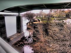 Under the Bridge (Lost in Flickrama) Tags: bridge tree philadelphia rocks pennsylvania branches bank infrastructure lamps schuylkillriver