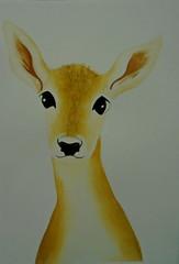 Deer, by Lourdinha - DSC02232 (Dona Minúcia) Tags: cute art beauty animal watercolor painting paper arte deer study beleza fofo pintura belo aquarela gracinha veado