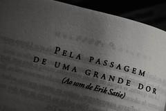 Me encontrars en cada cosa que he callado... (flor.ciganda) Tags: brasil libro literatura eriksatie caiof