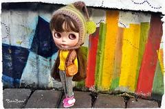 Polly on a walk