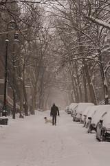 Snowstorm Jonas-12 (Diacritical) Tags: snow brooklyn iso800 pattern f45 jonas blizzard 70 2470mmf28 0ev nikond4 nikoncorporation sec secatf45 douglascpalmer2014 january232016 snowstormjonas