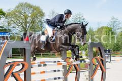 Willem-Busch-fotografie-20150510-DSC_3755-460.jpg (Wim Busch Fotografie) Tags: dustin jumpingschrodertubbergen2015 akzonobelprijs7jarigenjumpingschroder2015 michelhendrixjumpingschroder2015
