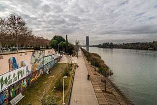 Seville Jan 2016 (4) 218 - Around and about Puente de la Barqueta