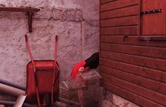 """J51/365   """"Le petit oiseau dans les travaux"""" (manon.ternes) Tags: pink portrait paris girl rose project rouge photography weird student photographie photos jupe 365 fille oiseau personnes challenge personne plugs travaux purplehair projet jeune parisienne etudiante brouette parisiens motion potique jupette 365days 365project projet365 ecarteurs"""