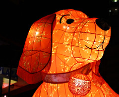 2016 Sydney Chinese New Year #59 (dominotic) Tags: horse dog rabbit monkey pig rat chinatown dragon snake tiger sydney goat australia ox festivaloflight nsw newsouthwales rooster chinesezodiac yearofthemonkey 2016 cityofsydney sydneychinesenewyear lunarnewyearcelebration cnysyd lunarlanterns