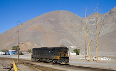 Barren trees (david_gubler) Tags: chile train railway llanta potrerillos ferronor