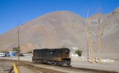 Barren trees (david_gubler) Tags: chile train railway llanta potrerillos ferronor