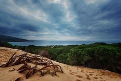 Todas las fotos-1340 (javiercollado) Tags: espaa costa spain paisaje andalucia d750 estrecho estrechodegibraltar natraleza