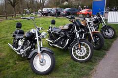 _R001330.jpg (Alain Stoll) Tags: bike indian motorbike harleydavidson bikers hellsangels tancrou