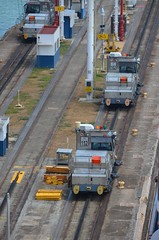 "The Panama Canal ""Mules"" (Neal D) Tags: donkey locomotive panama mitsubishi mule colon panamacanal gatun gatunlocks electriclocomotive"