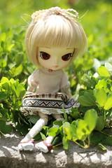 Baby in the garden (n a m i [ 波 ]) Tags: flower cute nature doll dal pullip junplanning dotori jundoll