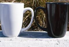 Day 040/365 - Black Cup, White Cup (Great Beyond) Tags: white black cup grass wall 50mm coffeecup slide slidefilm cups 35mmfilm mug fujifilm 365 coffeemug february slides e6 3000v coffeecups canonrebelti 2016 canonef50mmf14usm fujiprovia100f fujichromeprovia100f project365 canoneosrebelti colorreversal canoneosrebel3000v february2016