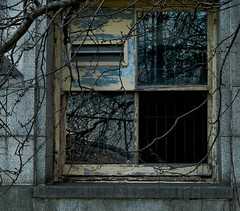 A Way In (BradPerkins) Tags: frightening urbex whatsinside hospital building window lines dark chicago reflection city branches urbanlandscape empty urbanexploration abandoned urban