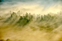 Airuno_3 (Riboli Alessandro) Tags: light rio fog alberi landscape nikon alba fiume natura nikkor sole nebbia atmosfera luce ai paesaggio lecco magia 80200 mattino foschia d700 airuno