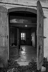 Apice Vecchia (Apice, Benevento, Italy) (IMG_0605srbn) (sassolino147) Tags: blackandwhite bw window landscape bn finestra ghosttown paesaggio biancoenero urbanlandscape apice paesaggiourbano cittàfantasma efs1755mmf28isusm apicevecchia eosm3 terremoto1962