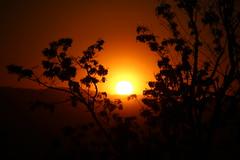 tramonto (fbxsa) Tags: sun rosso passione intenso fraglialberi