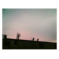 IMG_20160414_082009 (Selenofilia) Tags: street old blue orange black art water buildings concrete photography lights abend grande calle twilight edificios rust afternoon shadows decay venezuela caracas nostalgia mercado dew capitolio noon aire libre tarde sabana oscuro fotografa concree vintaje