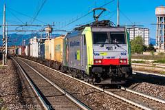486 502 (atropo8) Tags: italy train nikon merci milano zug cargo bls lombardia treno freight gottardo sestosangiovanni d810 486502