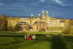 Spring Lambs at Stonyhurst College (Celebrating over 2 million views. Thank you) Tags: light building architecture spring spires lancashire lambs earlyevening broodingsky stonyhurstcollege 1593 hurstgreen jesuitphilosophy