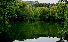 lake 2 (nahid mammadov) Tags: lake green water wow turkey daylight nikon asia picture best iso d750 nikkor gree bolu wonderfull