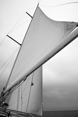Sails (John Harlock Haldane) Tags: sea sailboat blu abruzzo ortona