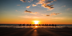 Sunset camel ride (Scenic Dreams Photography) Tags: ngc scenicsnotjustlandscapes