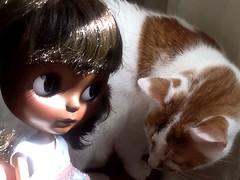 Dora and Clover: Part 2
