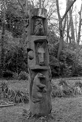 Totem Pole in the wildlife garden (Man with Red Eyes) Tags: park slr monochrome analog blackwhite wildlife totempole preston hp5 nikkor ilford millerpark nikonf6 f6 avenham 50mmf12 silverhalide v850 td201