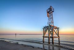 Bird on the Beacon (MichaelSOwens) Tags: sunrise gull beacon navigation hdr ameliaisland clearskies stmarysriver fernandinabeachflorida fortclinchstatepark