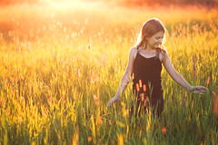 Dont forget the little things (tomasbaliukonis) Tags: light sunset summer sun colors girl beautiful beauty grass childhood backlight finland child sunsetlight