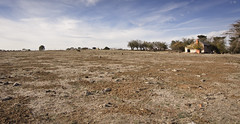 Drought (Phil Jackson 1947) Tags: drought desolate talbot parched