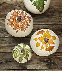 How to Make Botanical Pumpkins (Tutorial) (irecyclart) Tags: halloween pumpkin botanical leaf pots