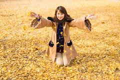 (bgfotologue) Tags: park autumn japan landscape carpet photography tokyo photo maple image foliage momiji    imaging    gingko   redleaves  showa   2015  bgphoto showamemorialpark   500px  tumblr fbpage bellphoto