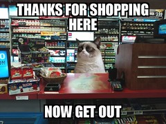Grumpy Cat Works My Shift For Me (pikespice) Tags: fdsflickrtoys thankyou meme goodbye grumpycat werehere 10millionphotos bighugelabs hereios