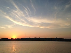 Sunset over Homebush bay 20160110 (Abhiks) Tags: sky west silhouette clouds reflections bay colours sydney potd inner homebush photooftheday 2006365 2016366