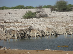 Africa 2015 068 (Absolute Africa 17/09/2015 Overlanding Tour) Tags: africa2015