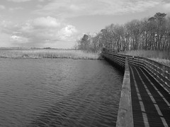boardwalk (chris aaront) Tags: wildlife national boardwalk delaware hook refuge prim