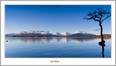 Winter Panorama At Millarochy (flatfoot471) Tags: winter landscape scotland unitedkingdom panoramic lochlomond stirlingshire 2016 balmaha millarochybay bendubh