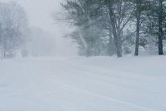 Blizzard 2016 (deanna.f) Tags: snow fuji fujifilm blizzard 35mmf2 p52 xt1